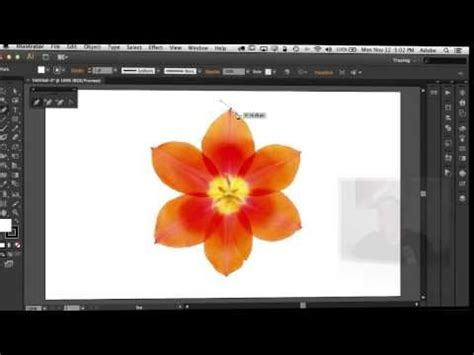 illustrator tutorial for photoshop users how to use the pen tool in adobe illustrator photoshop