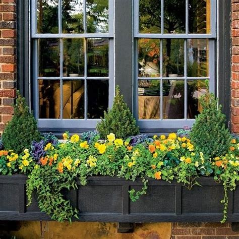 flower box garden flower box gardens