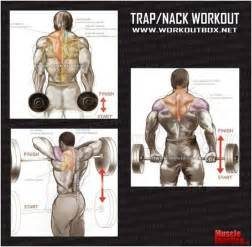 fitness purenudism traps workout exercise and workout on pinterest