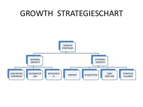 the growth dilemma determining your entrepreneurial type to find your financing comfort zone books stability and growth of strategy
