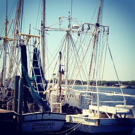 boat sales in jacksonville fl 1000 images about jacksonville beach florida on
