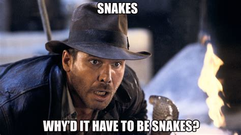 Indiana Jones Meme - indiana jones snakes memes