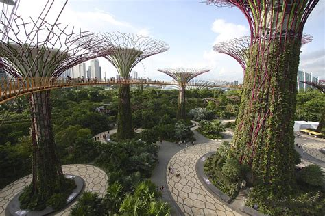 Singapore Gardens By The Bay by Gardens By The Bay