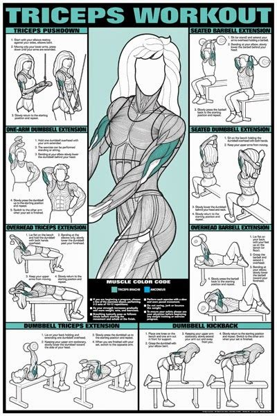 collective nation 411 awesome workout charts for weight