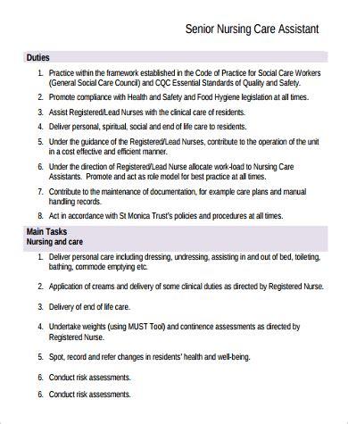 sle nursing assistant description 9 exles in