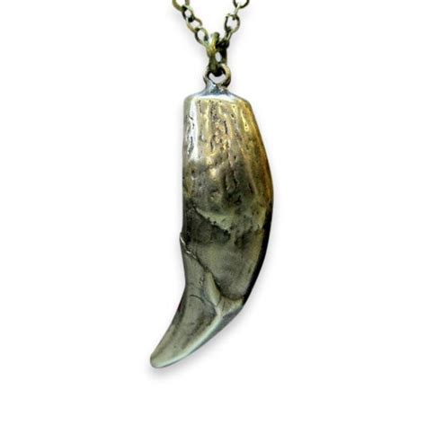 Wolf Tooth Necklace wolf tooth necklace moon designs