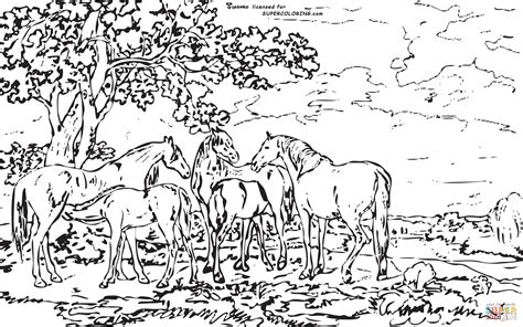 coloring pages for adults landscapes mares and foals in a river landscape by george stubbs