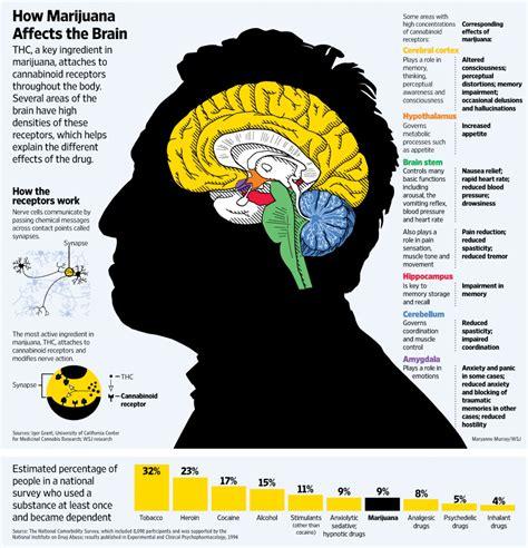 Does Marijuana Affect Detoxing From Parasites by Marijuana S Influence On A Abuse