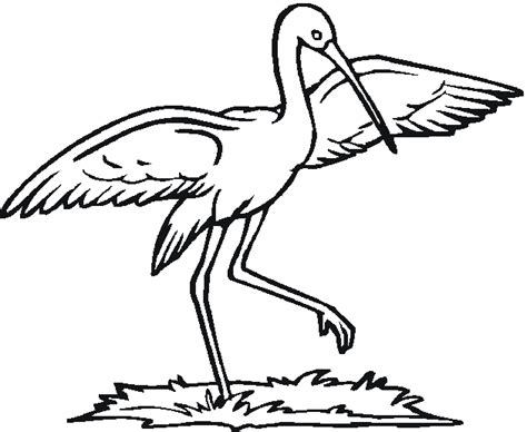 stork free coloring pages