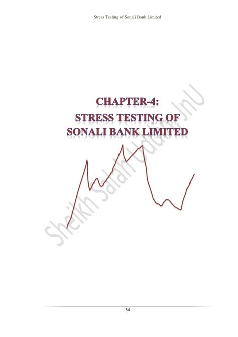 exchange rate sonali bank internship report of bba on stress testing