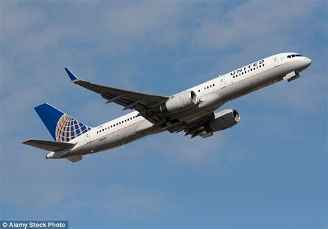 united airlines comfort united airlines changes its comfort animals policy daily