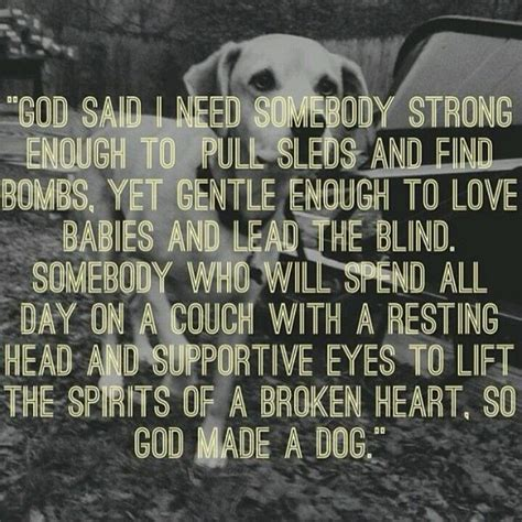images of love dogs dogs unconditional love quotes quotesgram