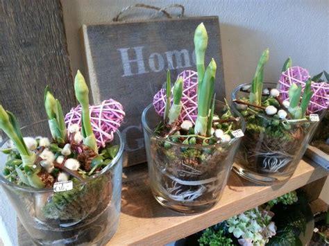 bolletjes tuin 25 beste afbeeldingen van winkel bloemen voorjaar band