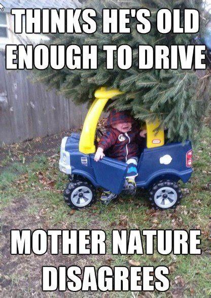 Nature Meme - welcome to memespp com