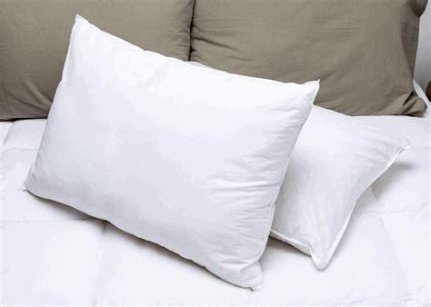 pacific pillows pacific pillows martex brentwood gold pillows standard