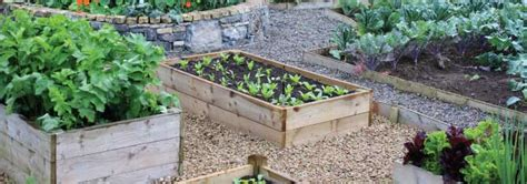 raised bed vegetable gardening how to use raised beds for vegetable gardening