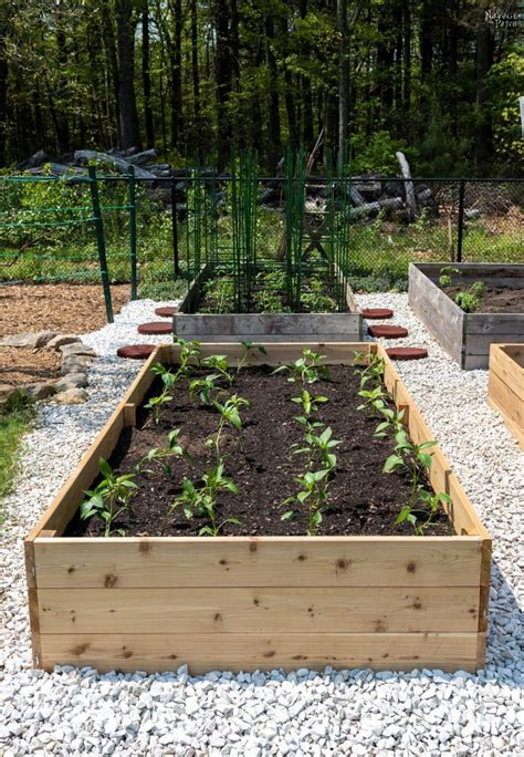 diy raised garden beds tutorial  navage patch