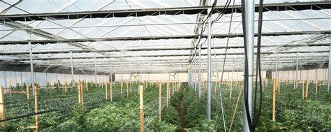 light dep greenhouse for sale commercial light deprivation greenhouse mountain