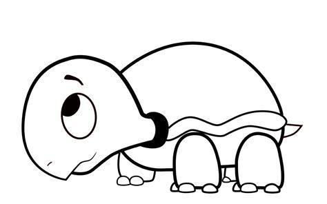 how to draw a cartoon turtle auto design tech