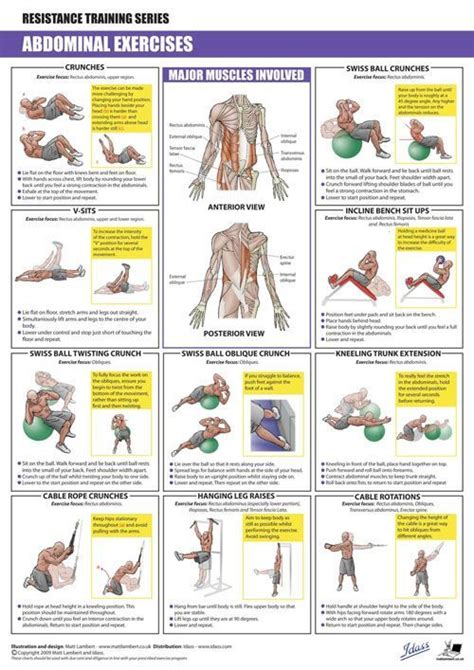 438 best stoned and toned images on health workout routines and abdominal exercises