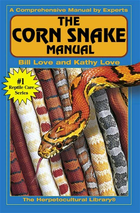 Corn Snakes Cornsnakes And More Corn Snakes Kathy Love