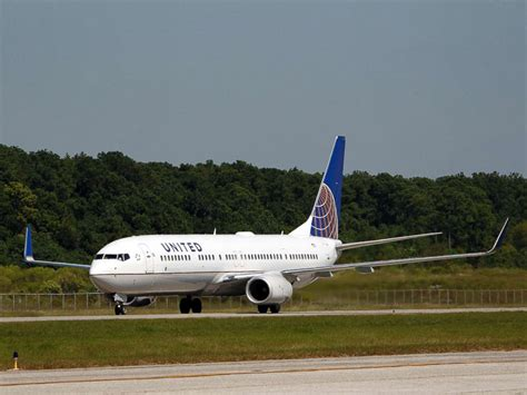 united airlines suspends program  pets flying  cargo