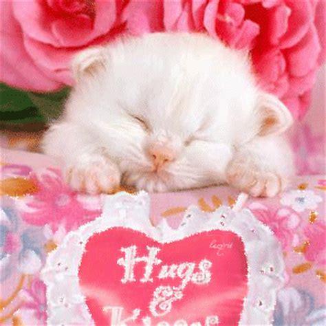 imagenes de amor animadas de animales gatitos tiernos