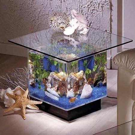 midwest tropical 25 gallon aqua coffee table aquarium tank best 25 cichlid aquarium ideas on cichlids