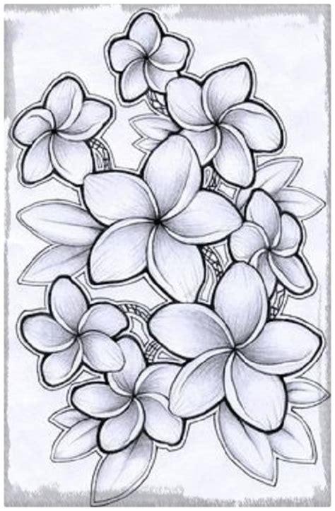 imagenes a lapiz flores imagenes de flores para dibujar a lapiz y color dibujos