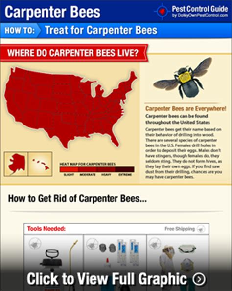 the carpenters guide treating on lines and the square also giving practical and methods on carpentry classic reprint books how to get rid of carpenter bees wood bees treatment