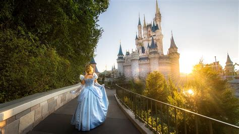 win a trip to walt disney world stay in cinderella castle suite and help give the world