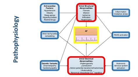 Remodeling App 2014 aha acc atrial fibrillation guidelines