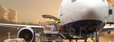 cargo management systems