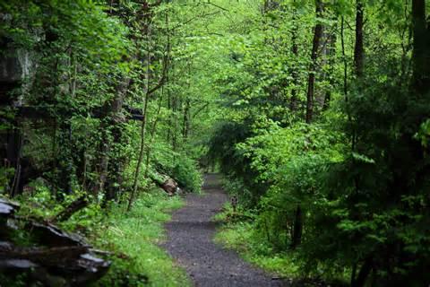 Hiking Trails File Hawks Nest Hiking Trail West Virginia