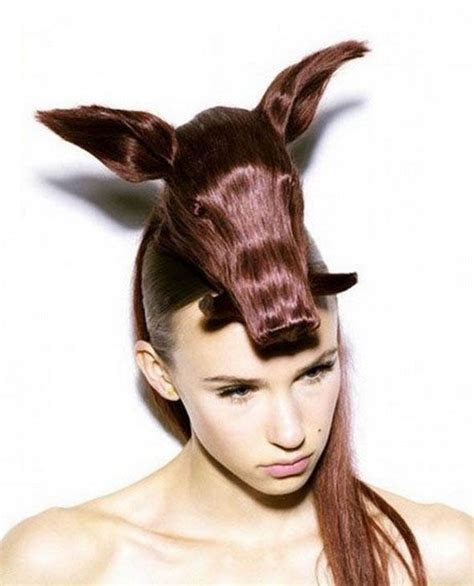 animal hairstyles creative animal hairstyles