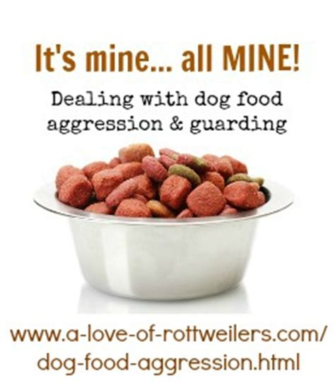 food aggression in puppies about food aggression a of rottweilers