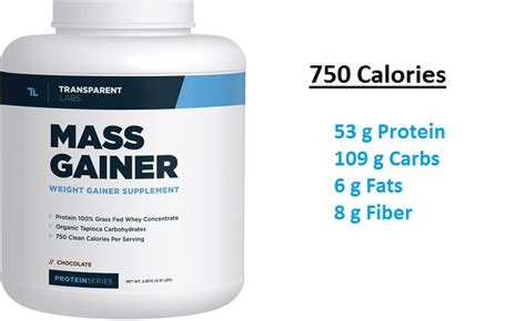 best protein mass gainer top 10 weight gainer supplements