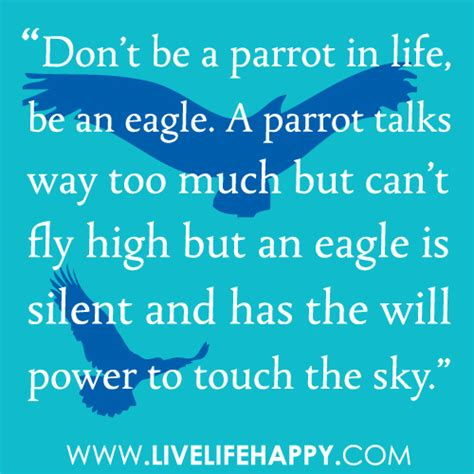 don t get high said the bird to the fly books don t be a parrot in be an eagle a parrot talks