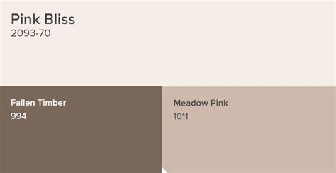 benjamin moore pink bliss paint color schemes interiors