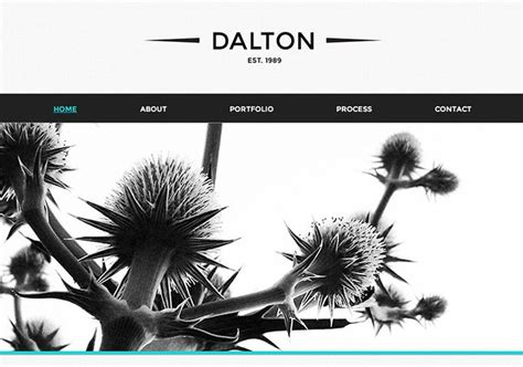 templates for muse 20 best images about web design on adobe