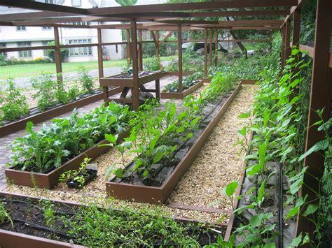 garden ideas easy indoor gardening easiest  grow flowers