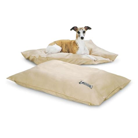 guide gear pillow top gusset dog bed 657471 kennels 2 milk bone 174 27x36 quot dog beds assorted colors 206862