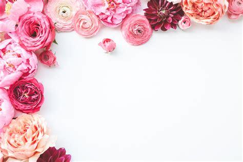 contoh frame undangan pernikahan bunga ulang