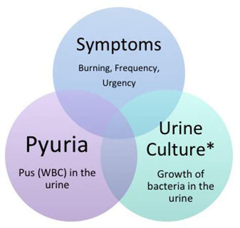 uti dehydration urinary tract infections metrovan urology