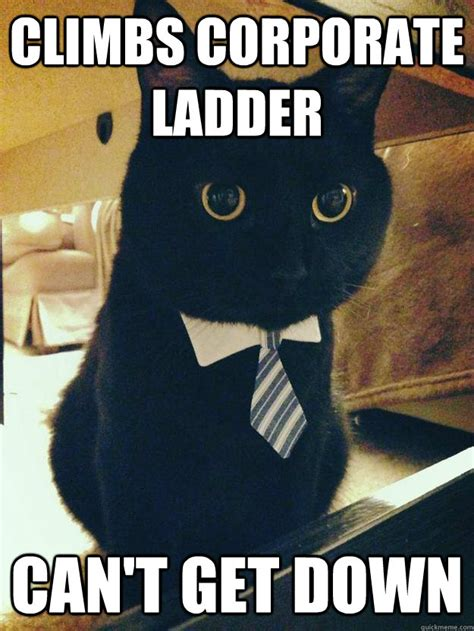 Ladder Meme - corporate cat memes quickmeme