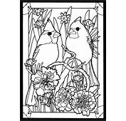 Coloring Page 1  2 3 4 Guide