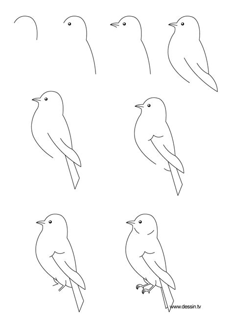 how to draw doodle birds drawing bird