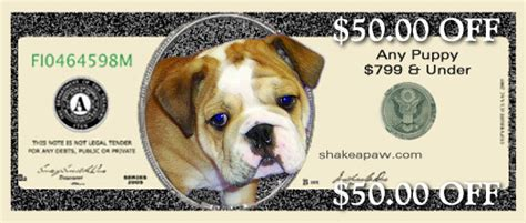 how to my to shake a paw coupons shake a paw shake a paw new jersey s puppy superstore