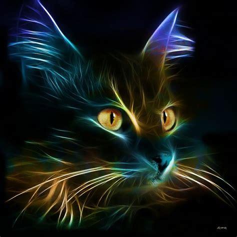 colorful cat wallpaper belles images de chat en fractale