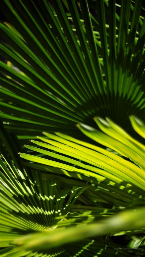 imagenes para celular vertical 1080 x 1920 fondo de pantalla del paisaje full hd